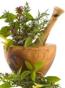 Léčivé bylinky